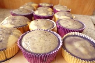 Hannah-Muffins mit Lavendel